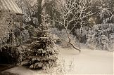 eingeschneiter Garten - Studio